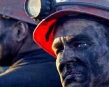 """Фильм называется """"Working Man's Death"""". Фото tobiz.ru"""