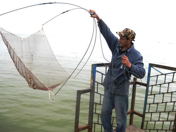 пауки рыболовные купить в спб