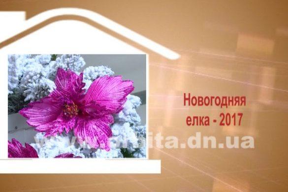 Дом советов 12.12.2016