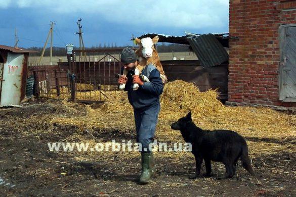 Сельхоз предприятия Донеччины: выжить вопреки всему