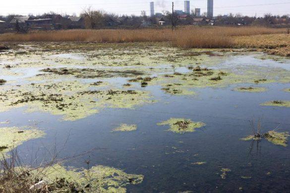 Каково будущее реки Казенный Торец и жителей Новоэкономического?
