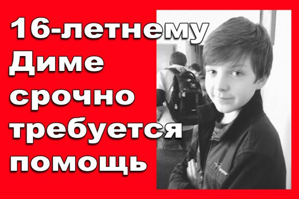 vovchak1