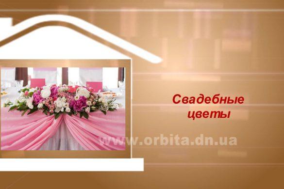Дом советов 01.05.2017