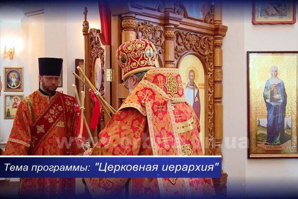 Откуда в Церкви «начальники и подчиненные»? 02.06.2017