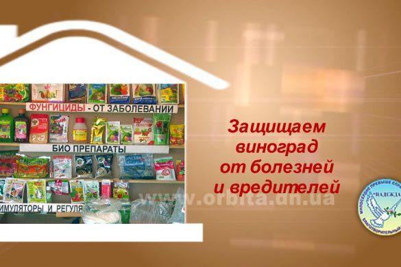 Дом советов 07.08.2017 (HD)