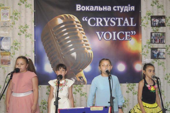 «Crystal voise» з Новогродівки: перші кроки до зірок